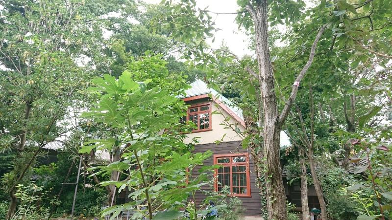 と も カフェ おき 昭和初期の洋館と和館 竹林と雑木林に囲まれた「カフェおきもと」